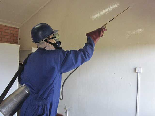 Pest Control – Cannot Do Without This Service